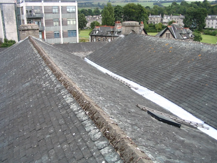 Annual Appeal, new roof